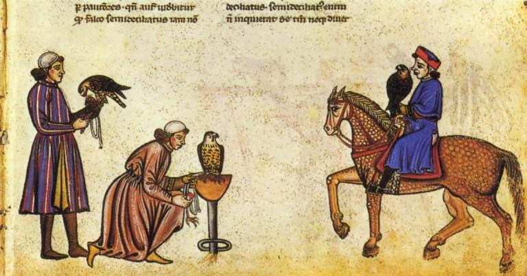 De arte venandi cum avibus_ Ms_ Pal_ Lat_ 1071, Biblioteca Apostolica Vaticana